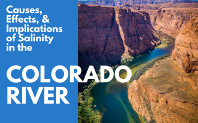 Causes, Effects, & Implications of Salinity in the Colorado River Basin