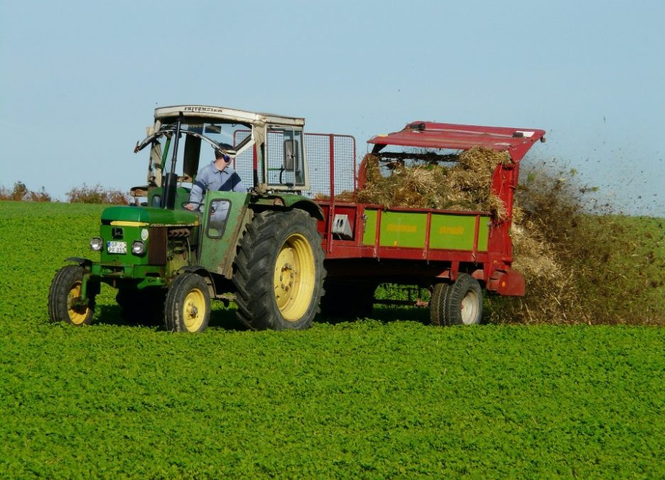 Combatting Nitrogen Pollution With An Eco-Friendly Solution