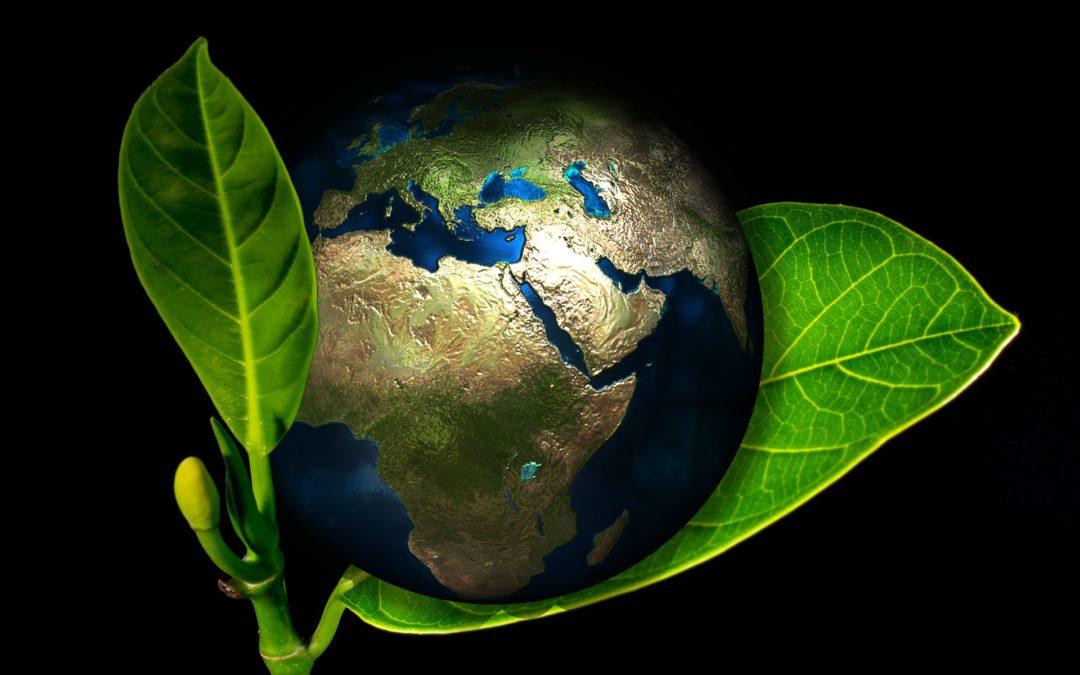environmental impact of water softeners